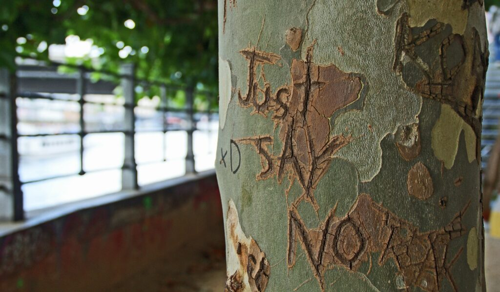 just say no etching on tree