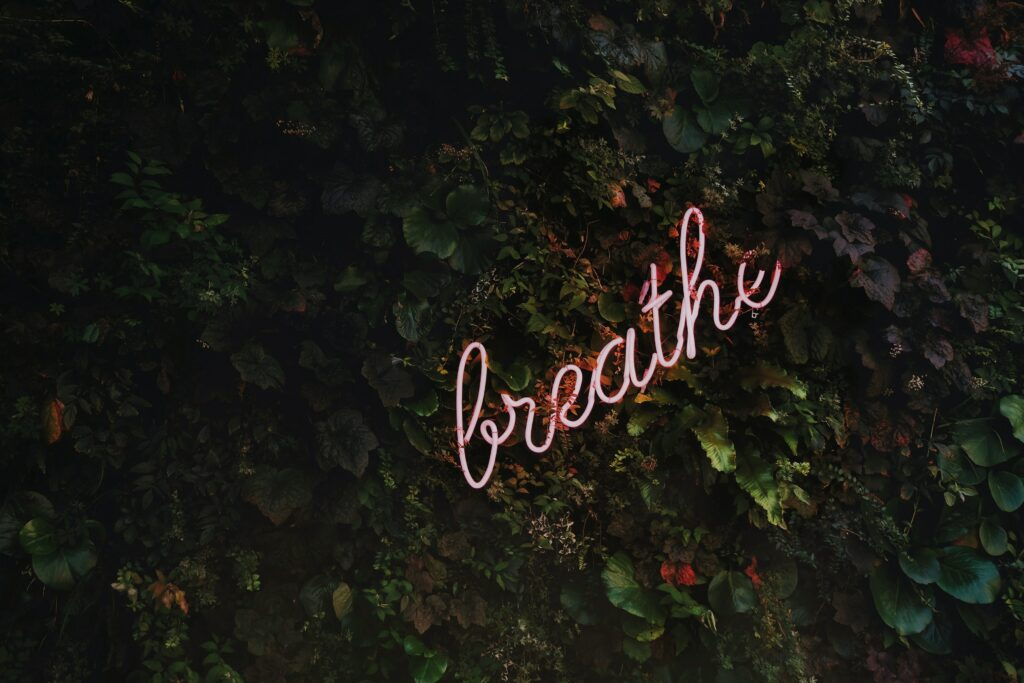 breathe neon text on shrubs how to deal with christmas stress