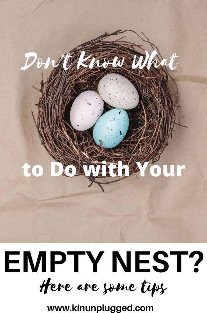 empty bird nest with eggs